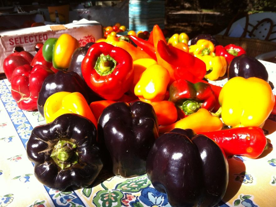 Fresh Produce at KK's The Farm